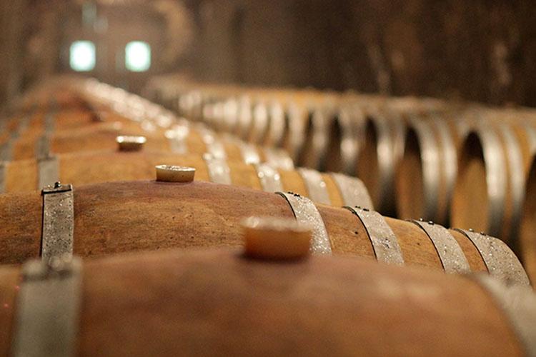 Wijnkelders van Decugnano dei Barbi